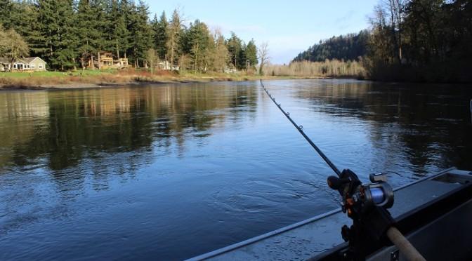 Salmon Season to Open Soon