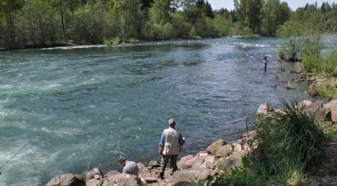 The Cowlitz River