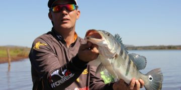 Best Lures for Bass Fishing