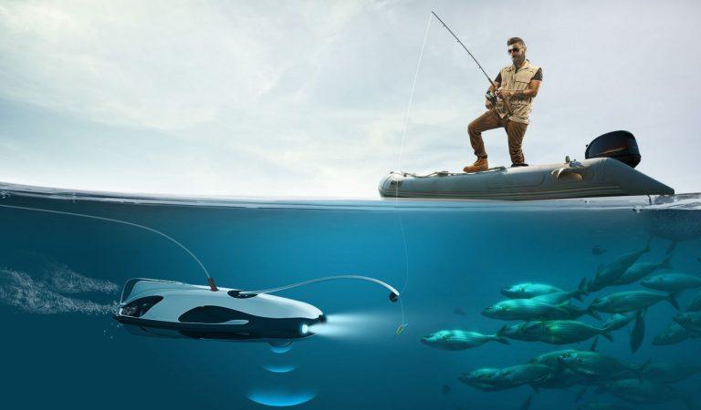 Underwater fish cameras